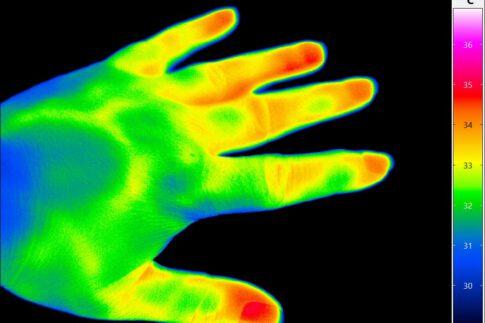 Bildbeispiele Wärmebildkamera